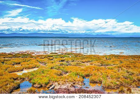 Closeup Of Saint Lawrence River Beach In Quebec, Canada With Gra