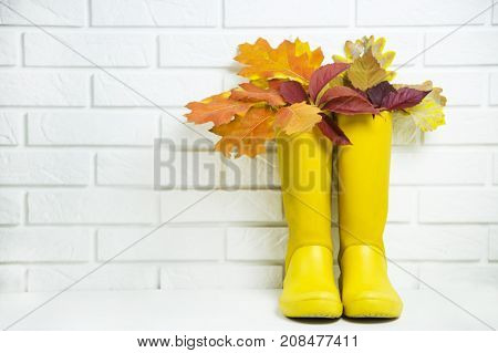 yellow rubber boots with a bouquet of autumn red-baked leaves against a white brick wall. Copyspace