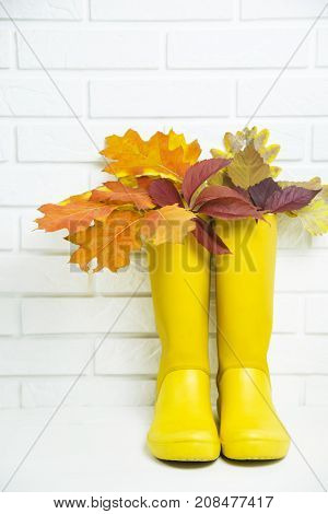 yellow rubber boots with a bouquet of autumn red-baked leaves against a white brick wall