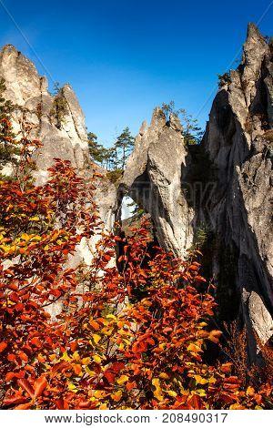 Cliffs Draped In Autumn Leaves, Sulov Rocks In Slovakia, Central