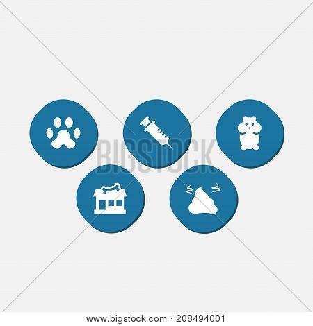 Collection Of Rat, Injection, Store And Other Elements.  Set Of 5 Animals Icons Set.