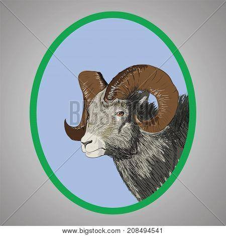 Head of a Ram in a Green Oval Frame