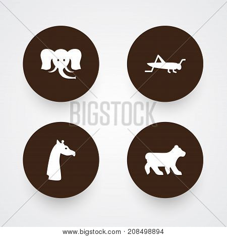 Collection Of Mantis, Trunked Animal, Camelopard And Other Elements.  Set Of 4 Zoology Icons Set.