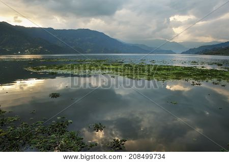 Sunset on Lake Feva with the reflection of the sky in the water and water vegetation.