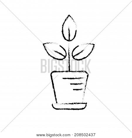 figure natural plant with leaves inside flowerpot vector illustration