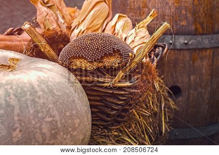 Basket with autumn products, close view .