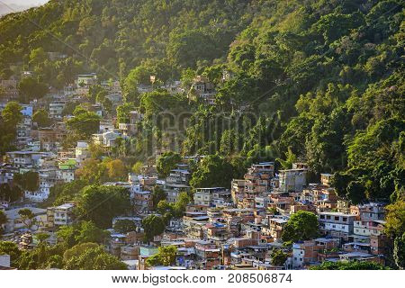 Favela between the vegetation of the slopes of the hills in Copacabana in Rio de Janeiro