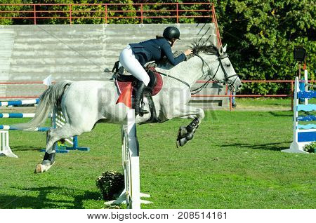 Young woman jockey ride beautiful white horse and jump over the crotch in equestrian sport