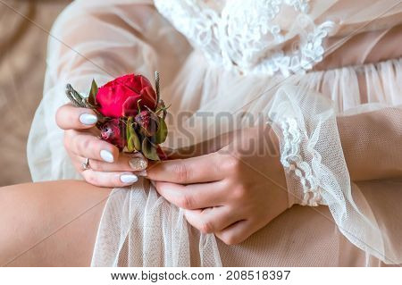 Bride Holding A Buttonhole. Gentle Hand Of The Bride Holding Boutonniere For The Groom