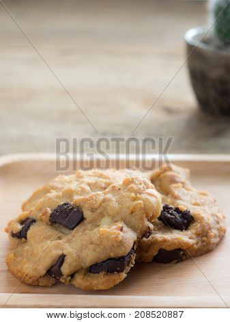 Cookies with chocolate and macadamia nuts. Placed on a wooden plate.The back is cactus pot.Coffee brake concept.