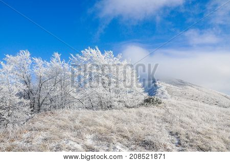 Winter scene: mountain and forest with hoar-frost on trees. Beautiful winter background