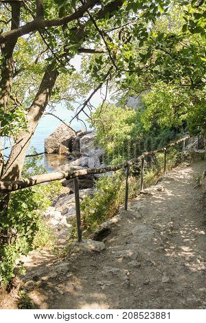 Railed along the path. Travel along the coast along the path of Prince Golitsyn.