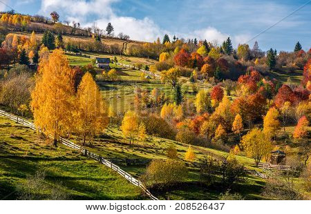 Rural Area On Hillside In Autumn