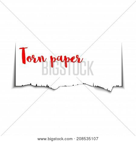Creative torn paper with ripped edges and space for text. Shredded page banner for web and print sale promo advertising presentation. Vector illustration.