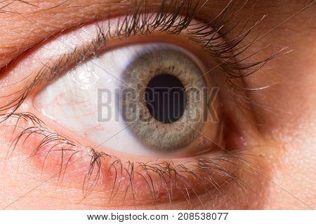 Close up on a blue eyes. Iris. Iridology. Soul. Dilated pupil