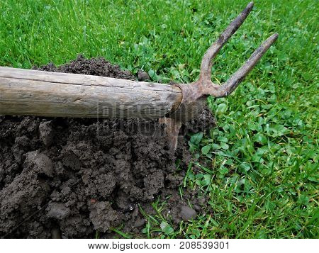 The antique hoe for everyday working on garden for digging into the earth. It is great tool for it.