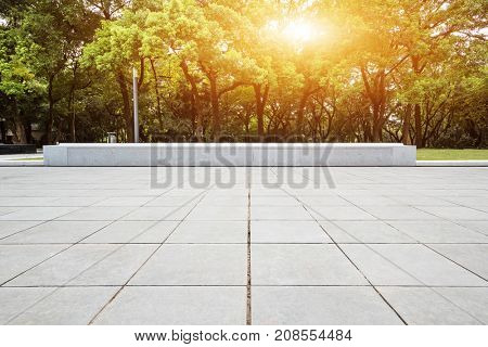 empty marble floor near green forest with sunbeam
