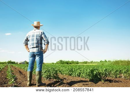 Farmer standing in field with green plants