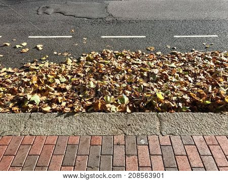 Pile of autumn leaves at the road side
