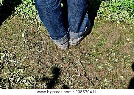 Adult is standing in blue jeans on a muddy trampled grass floor on a event