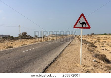 Road Sign: Beware Of Camels. Funny And Unusual Road Sign In Iranian Desert. Road Sign With Camel Sil