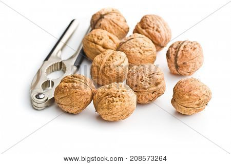 Tasty dried walnuts and nutcracker isolated on white background.