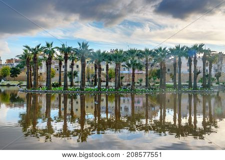 Jardin Jnan Sbil, Royal Garden In Fes. Morroco