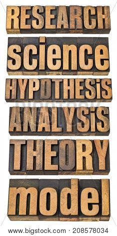 research  and science related terms - a collage of isolated words in vintage letterpress wood type - hypothesis, research, analysis, theory, model