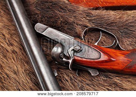 Old Double-barreled Shotgun, Disassembled, Gun On Wild Boar Furs.top View. Closeup