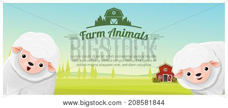 Farm animal and Rural landscape background with sheep , vector , illustration