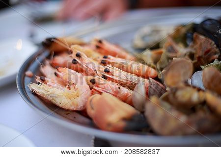 A seafood platter close up. Mixed Seafood platter in the restaurant.