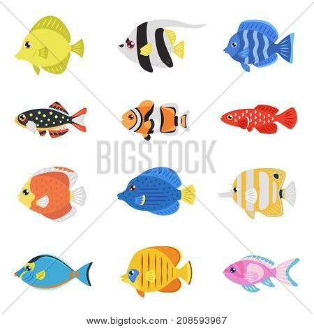 Colorful fish flat style vector set (tropical marine oceanic freshwater).