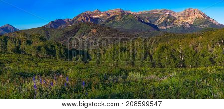 Mountains Scene near Park-City Utah in summer with clear blue sky