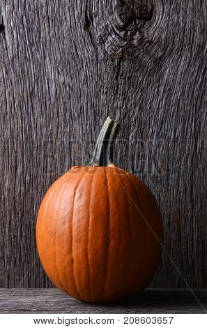 A medium sized carving pumpkin on display at a farmers market. Vertical format with copy space.