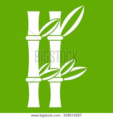 Bamboo icon white isolated on green background. Vector illustration