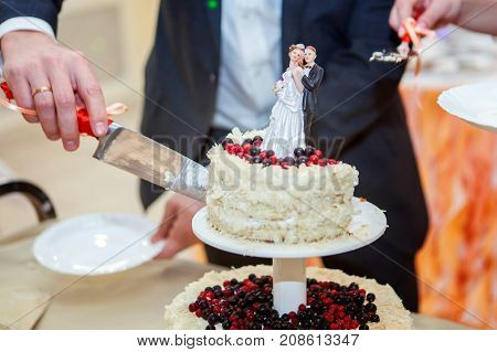 A bride and a groom is cutting their wedding cake