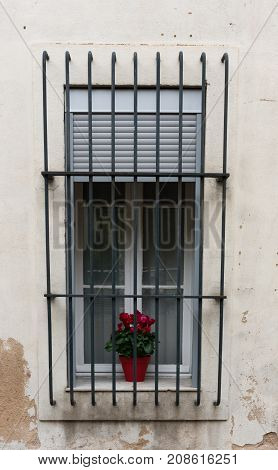 A window with metal bars and a potted geranium plant on the sill. The window has shades and curtains. The wall surrounding the window has peeling paint.