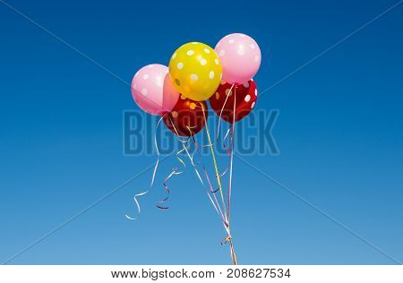 birthday decoration colored balloons against the blue sky