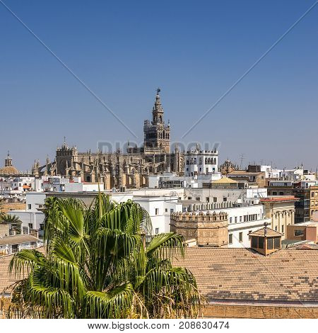 Looking across the rooftops of Seville in south west Spain