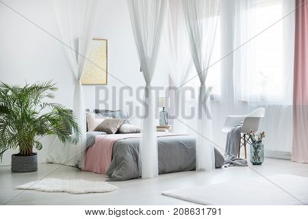 Sophisticated Bedroom Interior With Plant