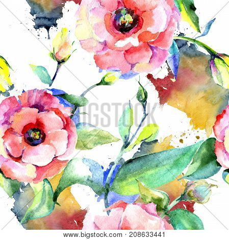 Wildflower eustoma flower pattern in a watercolor style. Full name of the plant: eustoma. Aquarelle wild flower for background, texture, wrapper pattern, frame or border.