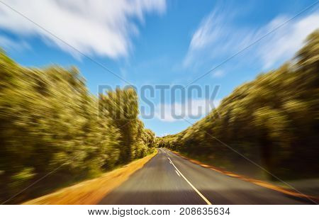 Driving fast into forest with motion blur effect .