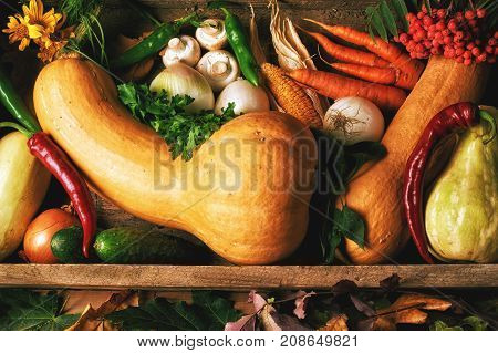 Autumn still life with pumpkin and autumn fruits . Vitamin food set