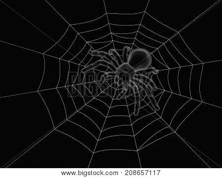 Black spider on spider web in the dark. 3D rendering