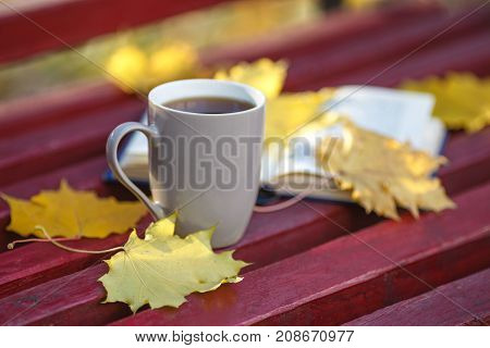 Education And Literature Concept - Open Book And Coffee Cup On Bench In Autumn Park