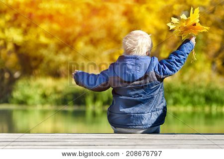 Blond Boy Sitting On The River Pier. Yellow Leaves In Hands. Back View