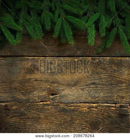 Christmas tree branches on wooden texture. Winter holidays background