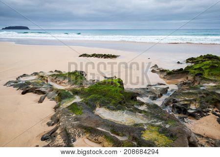 Landscape With Wet Coastal Rocks With Seaweed