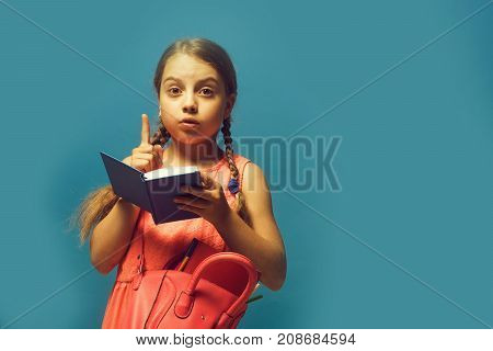 Pupil With Braids, Isolated On Blue Background With Copy Space