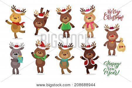 Santa's Reindeer Set. Vector illustrations of reindeer isolated on white background